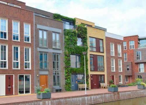 De groene gevel primeur in Delft en Nederland