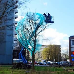 Bomenkap Martinus Nijhofflaan kan bijna beginnen