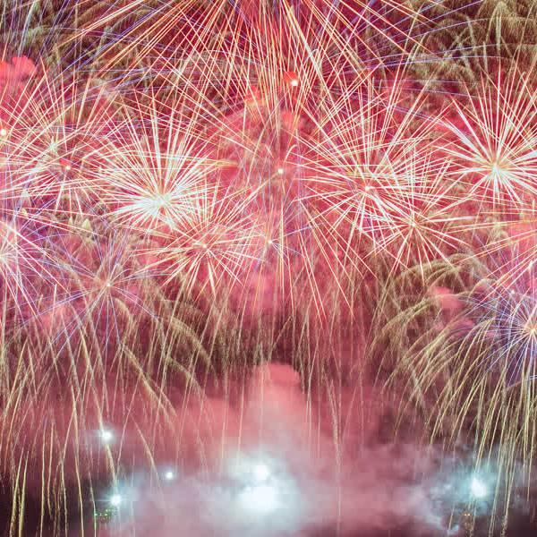 Delftenaren kunnen dit jaar vuurwerkvrije zones aanvragen
