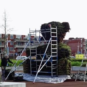 Delftse Compassiebeer komt weer tot leven