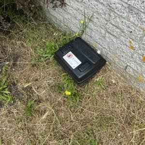 Rattenoverlast in de stad, gemeente en bewoners treffen maatregelen