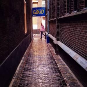 Honderd nieuwe gouden klinkers in de Jozefstraat voor honderd 'gouden Delftenaren'